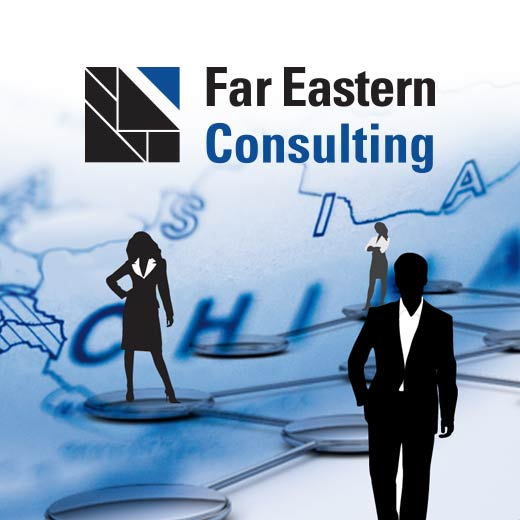 online design - Corporate Design - Far Eastern Consulting